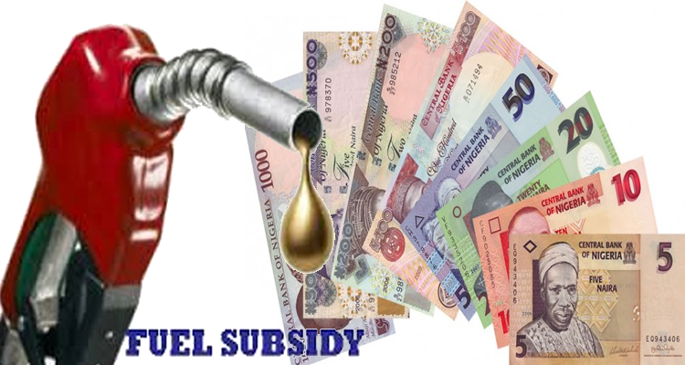 FG Says there is No Plan To Remove Fuel Subsidy